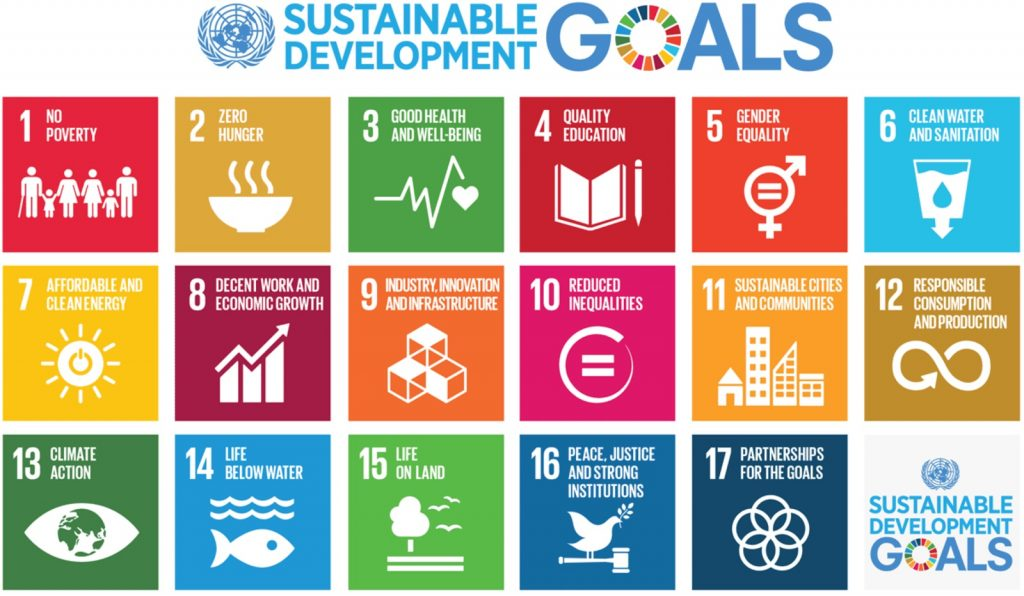 Sustainable Development Goals (IMAGE: United Nations)
